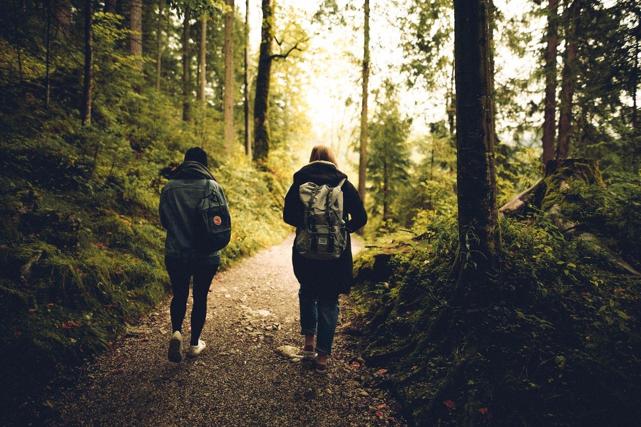 waarom wandelen in natuur goed is